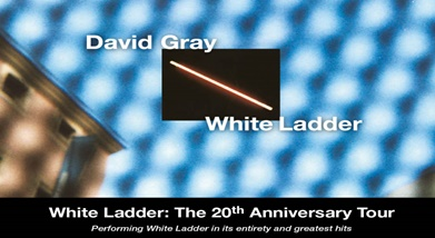 Image for DAVID GRAY