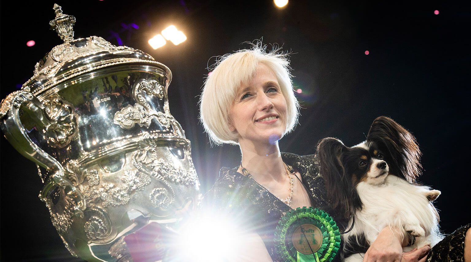crufts-arenas-image3.jpg